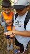 Salamander study at Camp Monte Toyon