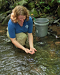Dr. Anna George releases a Southern Appalachian Brook Trout