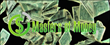 Masters of Money - Success Strategies To Rule Your World -  www.youtube.com/c/mastersofmoney