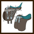 USA Equestrians Thrilled by Advanced German Saddles, a Single Saddle Can Now Properly Fit Many Horses – Pegasus Butterfly Saddles Now Released for Sale in the USA