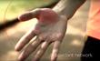 One X Sensor Palm Network of Antioxidants