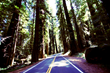 Feature on California Destinations Highlights the Growing Interest in Road Travel, Notes Van Rental Center