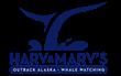 Alaska Whale Watching in Juneau