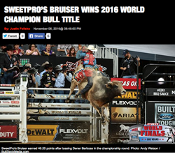 D&H Cattle Company's SweetPro's Bruiser with Dener Barbosa riding in the 2016 PBR championship round.