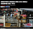 SweetPro's Bruiser Wins 2016 PBR World Champion Bull Title
