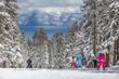 2016-17 Caifornia Ski Season is Open