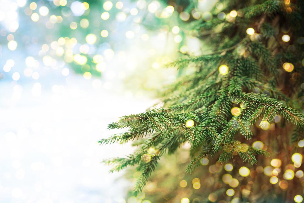 Serenity Rehab Donates To City Of Marne Christmas Tree Lighting