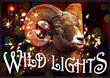 Brad Schmett Announces Luxury Home Buyers Go Wild for WildLights
