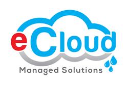eCloud Managed Solutions partners with AVANT