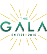 KVC Health Systems' 2016 Charity Gala Sparks an Evening of Giving to Benefit Children and Families