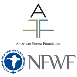 American Forest Foundation and National Fish and Wildlife Foundation logos