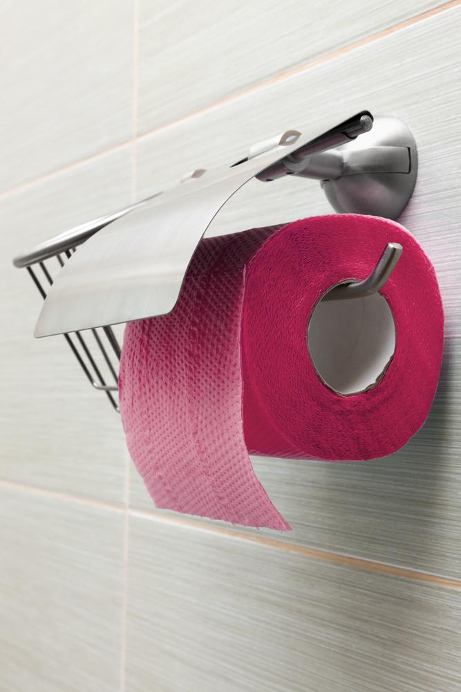 toilet paper helper