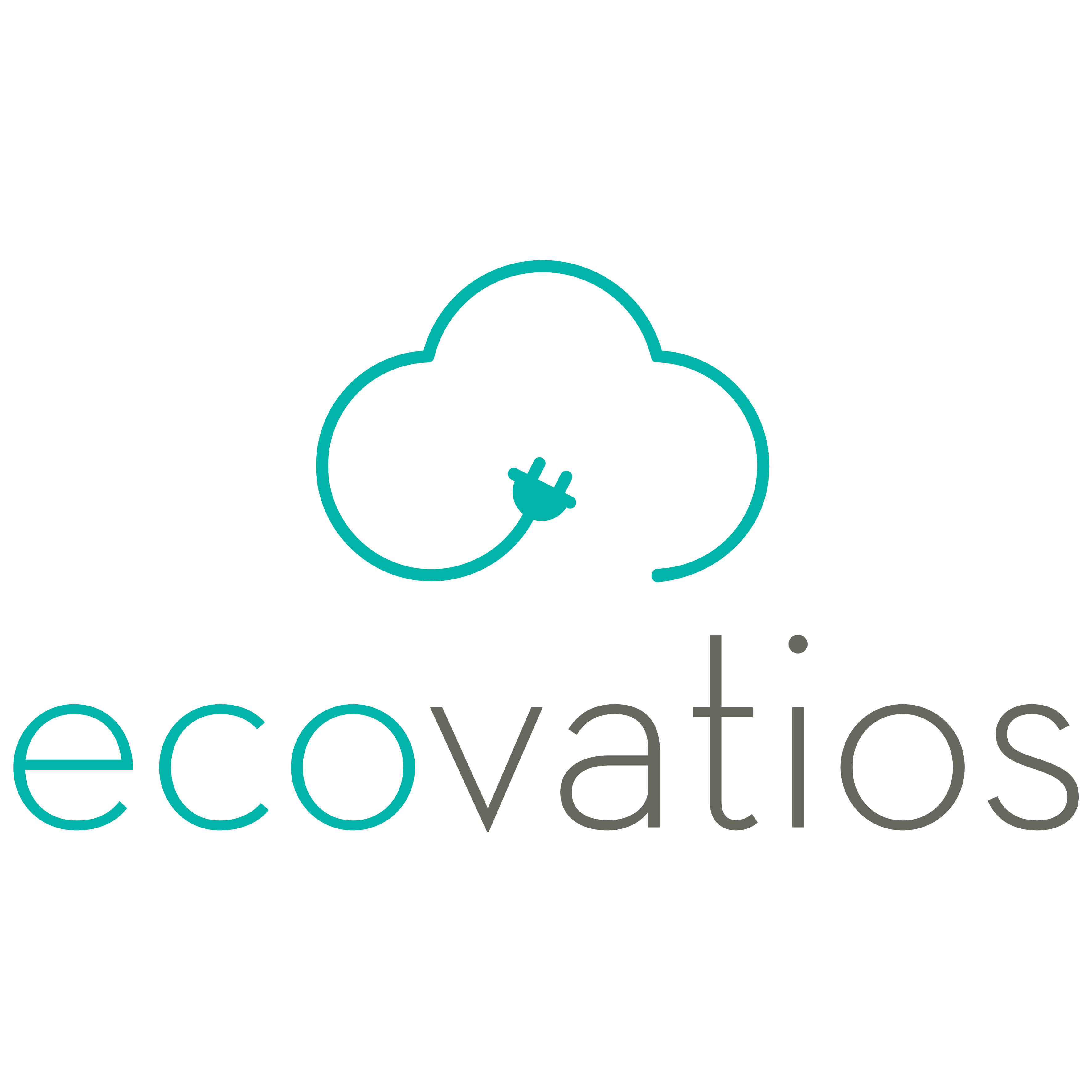 ecovatios  first 100  green utility company to promote pv
