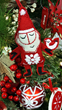 Denver Garden Center | Christmas Tree Lots Denver