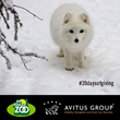 Avitus Group Announces 20 Days of Giving Honoring Company's 20th Anniversary; Gives Gift of Animal Adoptions at The Alaska Zoo to Children Spending Holidays in Hospital