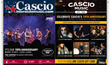 Musician Gift Ideas for Kids, Drummers, Guitarists, Pro Audio Enthusiasts and Students from Cascio Interstate Music