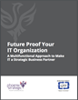 Phoenix Strategic Performance Launches eBook on IT Alignment of Structure, Process & People
