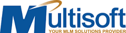 MultiSoft Corporation Logo