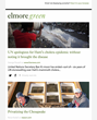 Elmore Green Launches Anti-Partisan, Echo Chamber Busting Newsletter