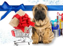 blue dog holiday puppy