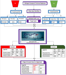 Schematic representation of the lipid profiling and quantitation workflow of SimLipid software using data from MPIS/NLS QqQ MS method