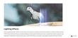 Final Cut Pro X - FCPX Overlay Glimmer 5K - Pixel Film Studios Plugin