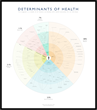Healthcare Design Studio Publishes Determinants of Health Research and Visualization