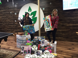 Toys collection at Treeium Valley Village office for the Children's Hospital LA