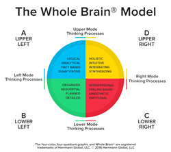 Herrmann's Whole Brain Model is the methodology supporting the Shanghai-based firm's IP.