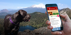 Dog-friendly trails are easily found on the Dogtrekker.com app.