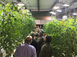 Growers Supply Announces Pre-Registration Discount for February CEA Workshop