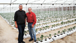 Tarek Hanafy and Michael Chaplinsky in hydroponic greenhouse