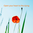 An emerging field that is creating a new profession, End of Life Doulas or Death Doulas, are bringing deeper meaning and greater comfort to the dying.