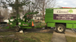 Deadwood Removal Video Published by Giroud Tree and Lawn