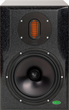two-way audio monitor