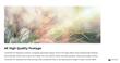 FCPX Plugin - TransFlare 4K Mystique - Pixel Film Studios