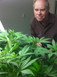 Ed Rosenthal Releases His First Blog On Growers Supply's Greenhouse Website, GrowSpan