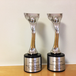 Davey Awards recently presented to Reach Beyond Marketing.