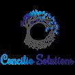 Concilio Solutions Celebrate 1 Year Anniversary