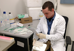 Building a tissue bank full of biomedical samples is painstaking, detailed work; a Sanyal Bio employee sorts and labels cryovials that will be cataloged, filled with liver and blood, and frozen down at -80 Celcius