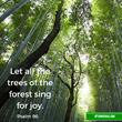 Sim Shalom and JU-tv Plant Seeds of Wisdom of Environmental Sustainability on TuBishvat