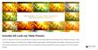 Pixel Film Studios Plugin - FCPX LUT Dynamic Volume 2 - FCPX