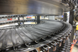 Cambridge Engineered Solutions Offers New CamEDGE MORE Conveyor Belt for Poultry and Meat Processing Cageless Spiral Systems