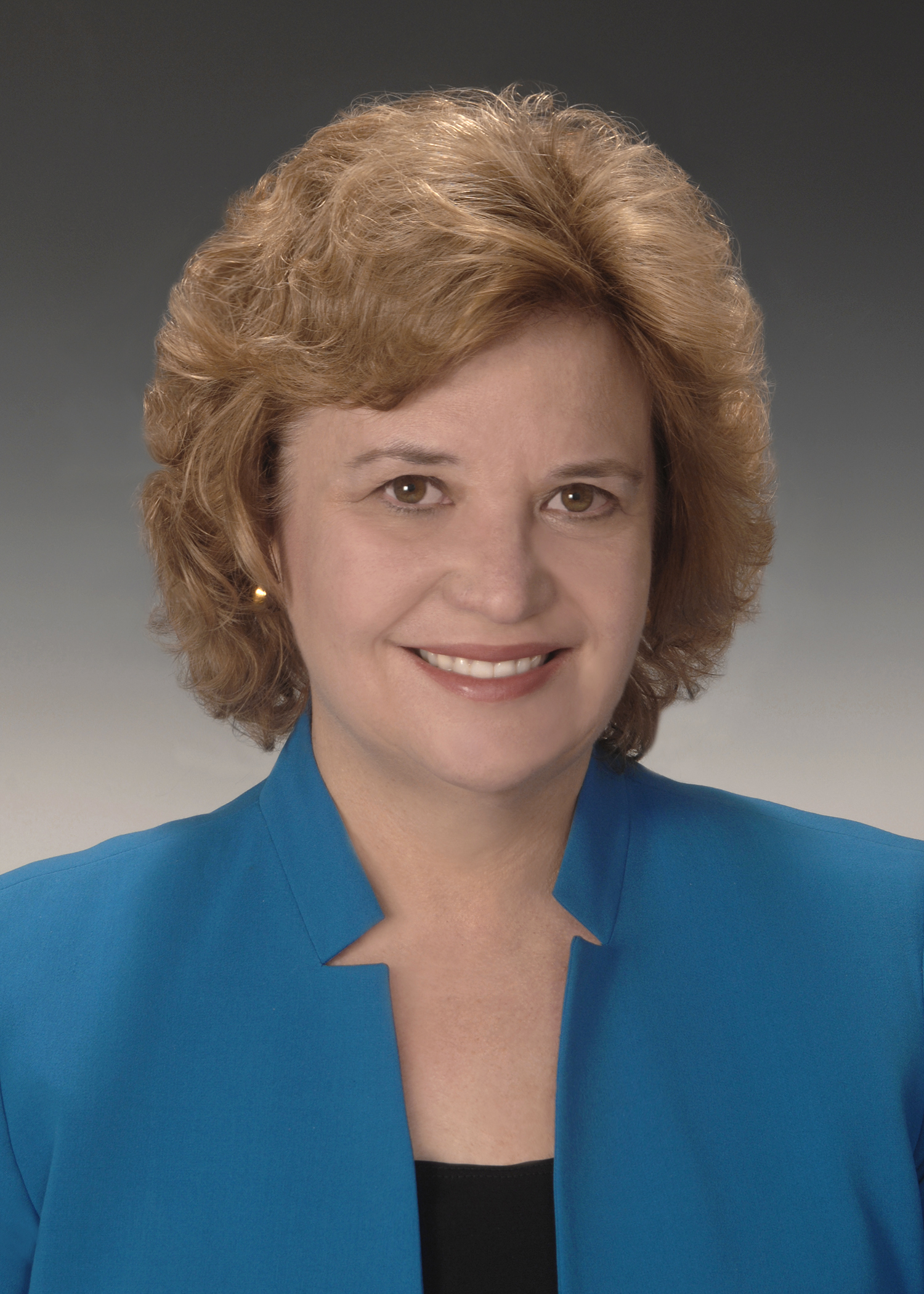 Diane Schwarz Vice President And Chief Information
