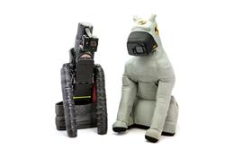 DUKE 2.0 - a Crash Test Dog with New Instrumentation & Better Biofidelity