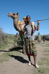 Resilience intervention provided help with livestock management and ultimately helped households to stay better nourished even throughout the drought cycle.
