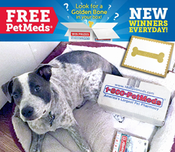 1-800-PetMeds Golden Bone Order Giveaway