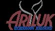 Gene Zapfel appointed President, Arlluk Technology Solutions, LLC