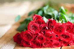 <Valentinesrosecare>
