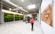 Corporate Design, Pacific Dental Services, Green Wall, Office